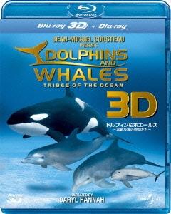 ドルフィン & ホエールズ 3D ~素敵な海の仲間たち~