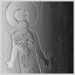 Unkle/エンド・タイトルズ…ストーリーズ・フォー・フィルム [TRCP-037X]