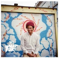 Toro Y Moi/What For?[CAK102]