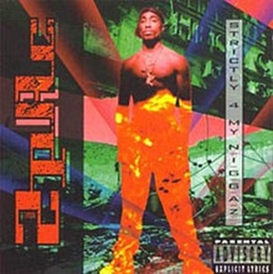 2Pac (Tupac Shakur)/Strictly 4 My N.I.G.G.A.Z.[1416342]