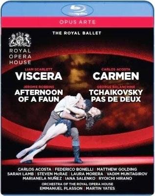 バレエ《ヴィサラ》、《牧神の午後》、《カルメン》、《チャイコフスキーのパ・ド・ドゥ》