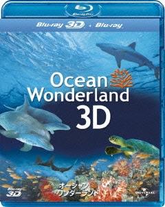 オーシャン・ワンダーランド 3D