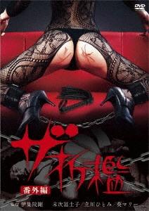 ザ・折檻 番外篇 DVD