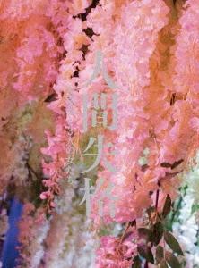 人間失格 太宰治と3人の女たち 豪華版 [Blu-ray Disc+DVD] Blu-ray Disc