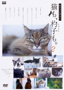 ネコメンタリー 猫も、杓子も。2