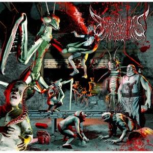Exormantis CD