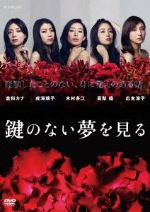 倉科カナ/鍵のない夢を見る DVDコレクターズBOX [FXBA-62932]
