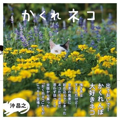 かくれネコ Book