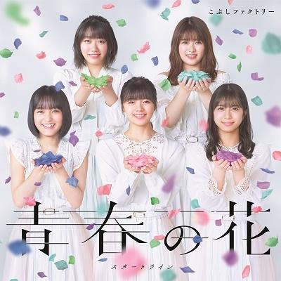 青春の花/スタートライン