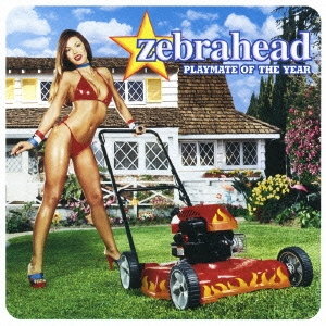 Zebrahead/プレイメイト・オブ・ザ・イヤー[SICP-1911]