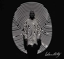 Colton Dixon/Identity (Deluxe Edition)[B002632002]