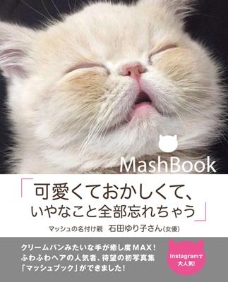 Mash Book Book