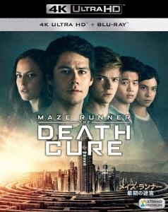 ウェス・ボール/メイズ・ランナー:最期の迷宮 [4K Ultra HD Blu-ray Disc+Blu-ray Disc][FXHA-67900]