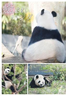 癒されパンダ 〜リーリーとシンシン〜 DVD