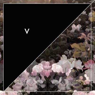Violens/Acid Reign - 来日記念1コインEP<限定盤>[RYEEP-009]