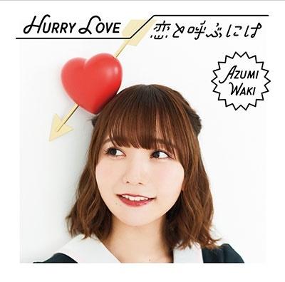 Hurry Love/恋と呼ぶには [CD+DVD]<初回限定盤B> 12cmCD Single