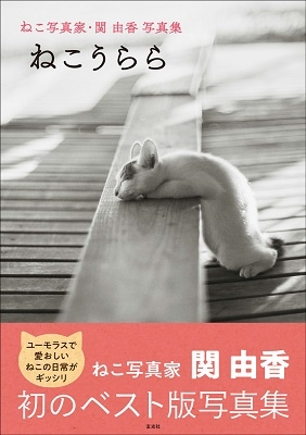 ねこ写真家・関由香写真集 ねこうらら Book