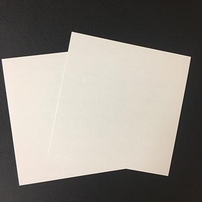 disk union EP用保護プレート/紙製 (10枚セット)[ACS474]