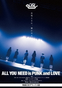 ALL YOU NEED is PUNK and LOVE 特典付きデラックス版 DVD