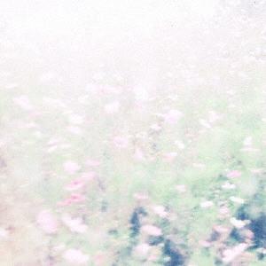 Chihei Hatakeyama/The fall rises[WPMC-036]