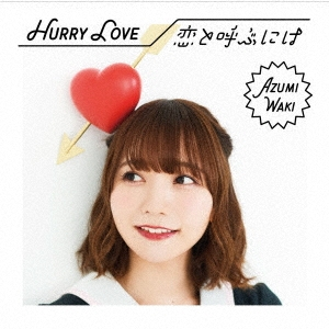 Hurry Love/恋と呼ぶには [CD+DVD]<初回限定盤B> 12cmCD Single