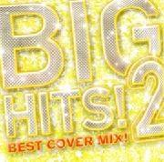 DJ K-funk/BIG HITS!2 -Best Cover Mix!! Mixed by DJ K-funk[ZLCP-0121]