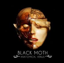 Black Moth/Anatomical Venus[5787018]