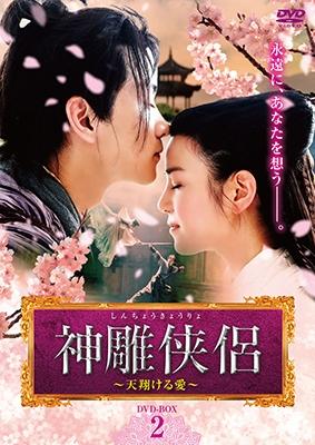 神雕侠侶~天翔ける愛~ DVD-BOX2 DVD