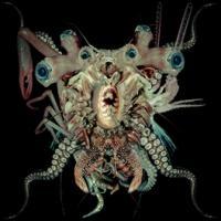 DJ Skull Vomit/Ritual Glow[MURCD-033]