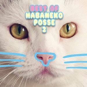 BEST OF HABANEKO POSSE 2