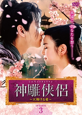 神雕侠侶~天翔ける愛~ DVD-BOX3 DVD