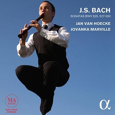 ヤン・ファン・へッケ/J.S.バッハ: 6つのトリオ・ソナタより BWV.252, BWV.527-BWV.530 〜リコーダーとチェンバロ、フォルテピアノ編〜[ALPHA237]