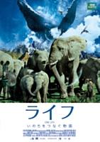 マイケル・ガントン/ライフ-いのちをつなぐ物語-DVDスタンダード・エディション スペシャルプライス版 [EYBF-10159]