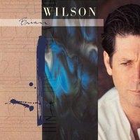 Brian Wilson<限定盤>
