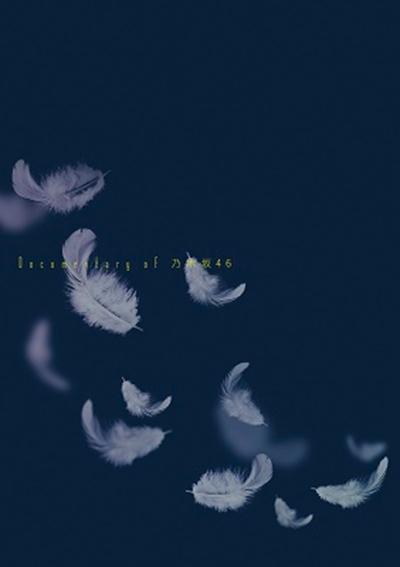 いつのまにか、ここにいる Documentary of 乃木坂46 コンプリートBOX<完全生産限定版> DVD