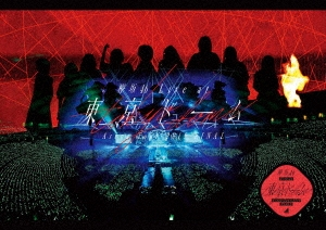 欅坂46 LIVE at 東京ドーム ~ARENA TOUR 2019 FINAL~<通常盤> DVD