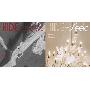 Hide And Seek: 3rd Mini Album (ランダムバージョン)