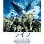 ライフ-いのちをつなぐ物語-Blu-Rayスタンダード・エディション スペシャルプライス版<期間限定発売>
