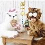 猫中毒 [CD+DVD]<初回盤B>