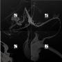 Wings: BTS Vol.2 (ランダムバージョン)
