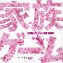 フジテレビ系ドラマ 家族ゲーム オリジナル・サウンドトラック