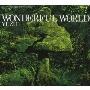 ゆず/WONDERFUL WORLD [SNCC-86918]