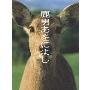 玉木宏/鹿男あをによし DVD-BOX ディレクターズカット完全版(6枚組) [PCBC-60939]