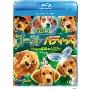 ゴースト・バディーズ/小さな5匹の大冒険 ブルーレイ+DVDセット [Blu-ray Disc+DVD]