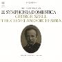R.シュトラウス: 家庭交響曲