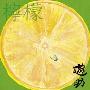 檸檬<通常盤>
