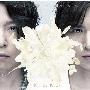 道は手ずから夢の花 [CD+DVD]<初回盤A>