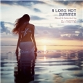 A Long Hot Summer: Mixed & Selected by DJ Meme
