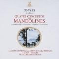 Quatre Concertos pour Mandolines - Caudioso, Giuliano, Eterardi, Gabbellone