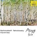 Rachmaninov; Tchaikovsky: Piano Trios